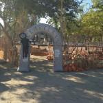 Pumpkin Patch Frandy Park Campground
