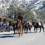 Horse Walk Parade Frandy Park Campground