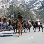 Horse Walk Parade Frandy Park Campground