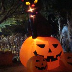 Holloween decarations Frandy Park Campground